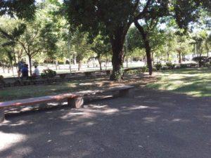 Sortie conviviale Nord – Le Jardin de l'Etat